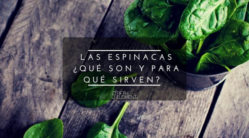 Espinacas… ¿Qué son y para qué sirven?